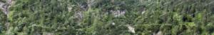 Bewaldeter Steilhang Teil 2 – Modellbahn Hintergrund 300 x 50 cm 8