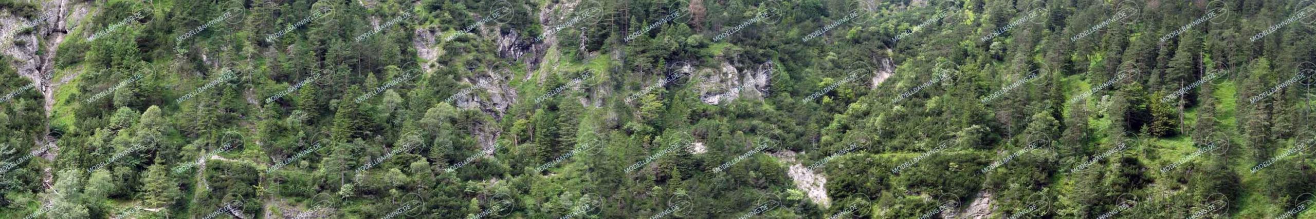Bewaldeter Steilhang Teil 2 – Modellbahn Hintergrund 300 x 50 cm 1