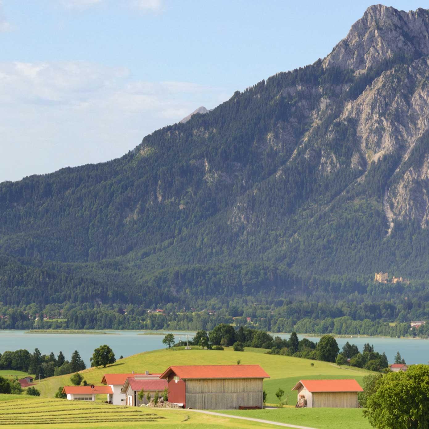 """Allgäu Teil 3 """"Forggensee"""" – Modellbahn Hintergrund 300cm x 70 cm 2"""