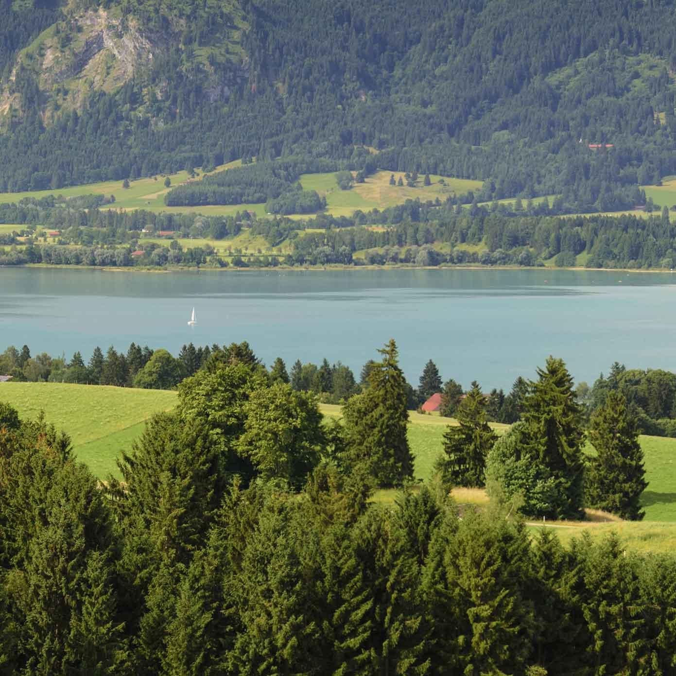 """Allgäu Teil 3 """"Forggensee"""" – Modellbahn Hintergrund 300cm x 70 cm 3"""