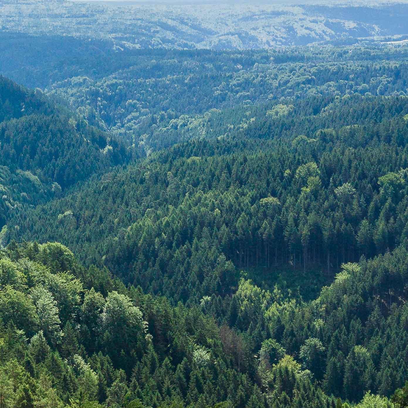 """Mittelgebirge Teil 3 """"Kelheim"""" – Modellbahn Hintergrund 300cm x 50 cm 2"""