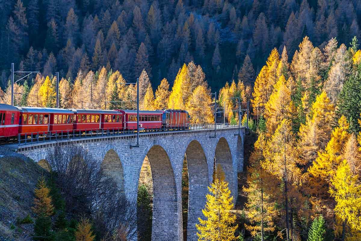Der Sightseeingzug Bernina Express der Rhätischen Bahn fährt auf dem Viadukt mit Blick auf bunte Bäume an einem sonnigen Herbsttag, Kanton Graubünden, Schweiz