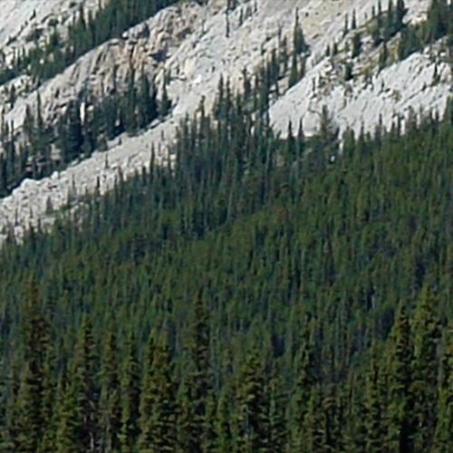 web_Rocky_Mountains-001-300x50-detail2 3