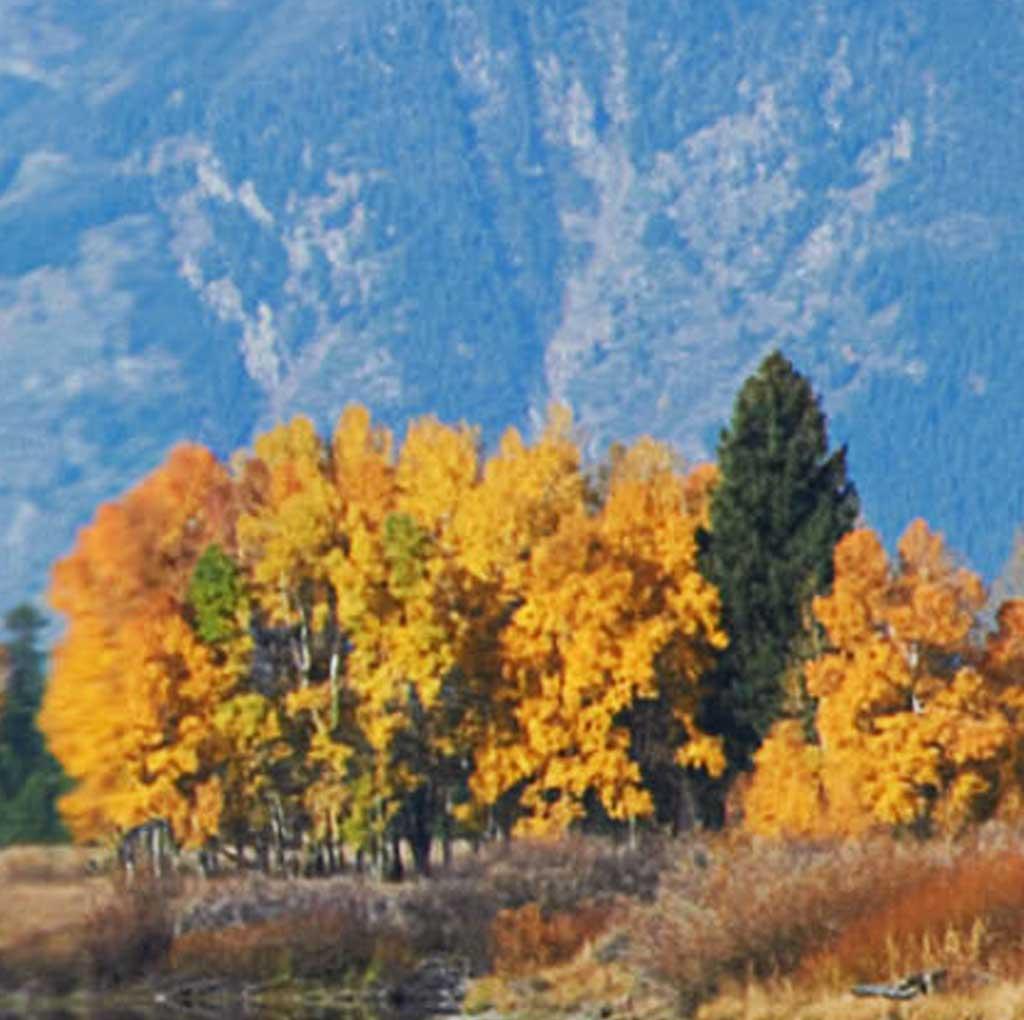 """Modellbahn Hintergrund """"Yellowstone"""" auf 3 x 0,5 Meter 10"""